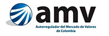 logo-amv